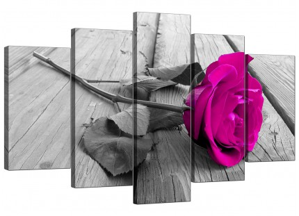 Extra Large Pink Rose Canvas Prints 5 Piece in Black & White