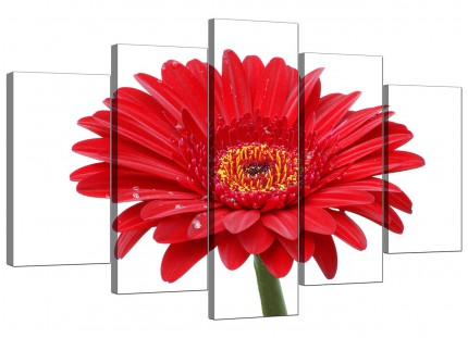 Extra Large Red White Gerbera Daisy Flower Floral Canvas - 5 Part - 160cm - 5097