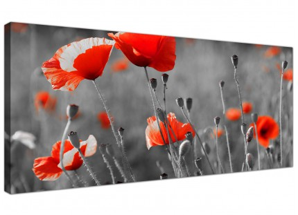 Large Red Poppy Black White Flower Poppies Floral Canvas Art - 120cm - 1135