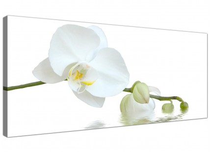 Large White Orchid Flower Modern Fresh Floral Canvas Art - 120cm - 1134