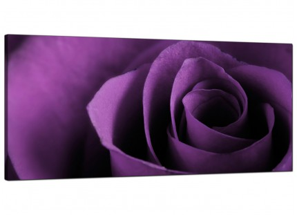 Large Purple Rose Petal Flower Floral Modern Canvas Art - 120cm - 1112