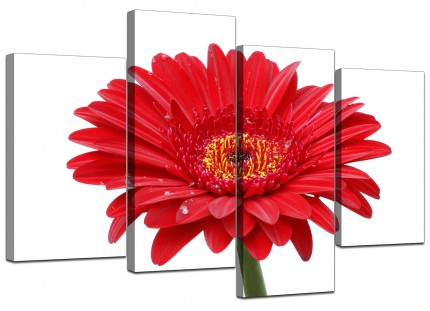 Red White Gerbera Daisy Flower Floral Canvas - Split 4 Panel - 130cm - 4097