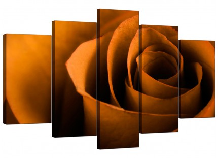 Extra Large Orange Black Rose Petal Flower Floral Canvas - 5 Part - 160cm - 5141