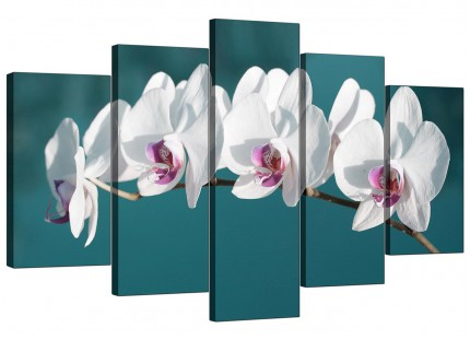 Extra Large Teal White Orchid Flower Branch Floral Canvas - 5 Set - 160cm - 5115