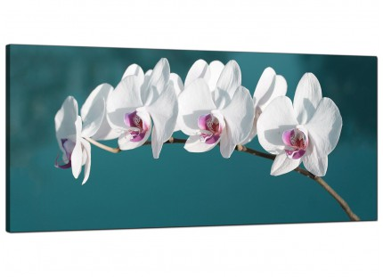 Large Teal White Orchid Flower Branch Floral Modern Canvas Art - 120cm - 1115