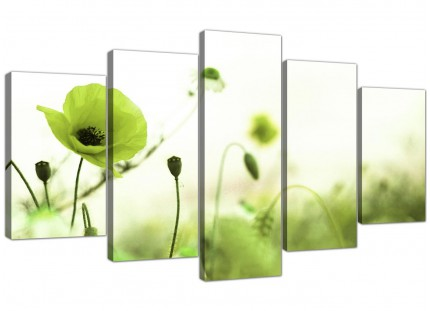 Lime Green White Poppy Field Flowers Floral XL Canvas - 5 Piece - 160cm - 5273