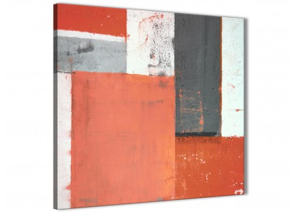 Coral Grey Abstract Painting Canvas Wall Art Pictures - Modern 64cm Square - 1s336m