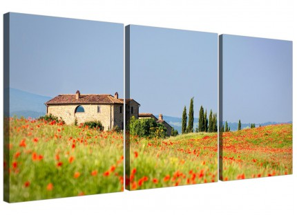 Red Floral Green and Blue Tuscan Hills - Canvas Pictures of Italy