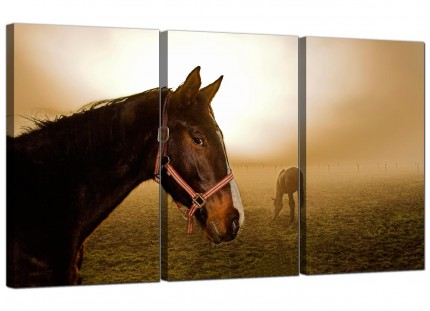 Horses Canvas Art 3 Panel for your Living Room