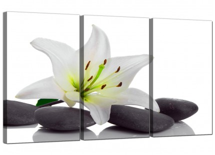 Modern Black White Grey Lily Flower Stones Floral Canvas - 3 Part - 125cm - 3024