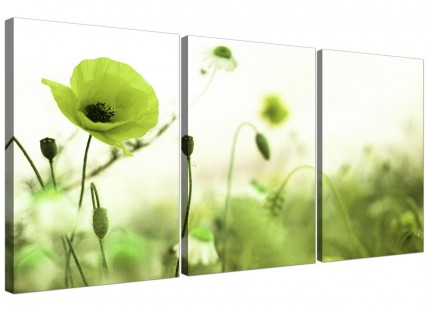Modern Lime Green White Poppy Field Flowers Floral Canvas - 3 Set - 125cm - 3273