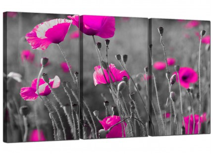 Modern Pink Poppy Black Grey Flower Poppies Floral Canvas - 3 Set - 125cm - 3137