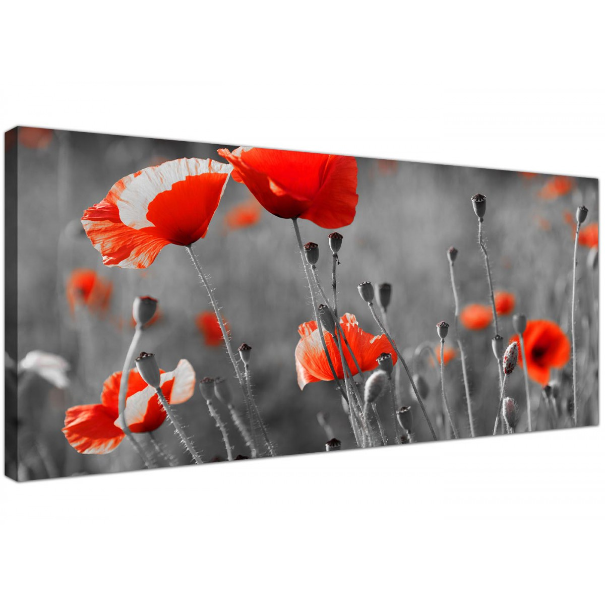 Large Black And White Canvas Art Of Red Poppies