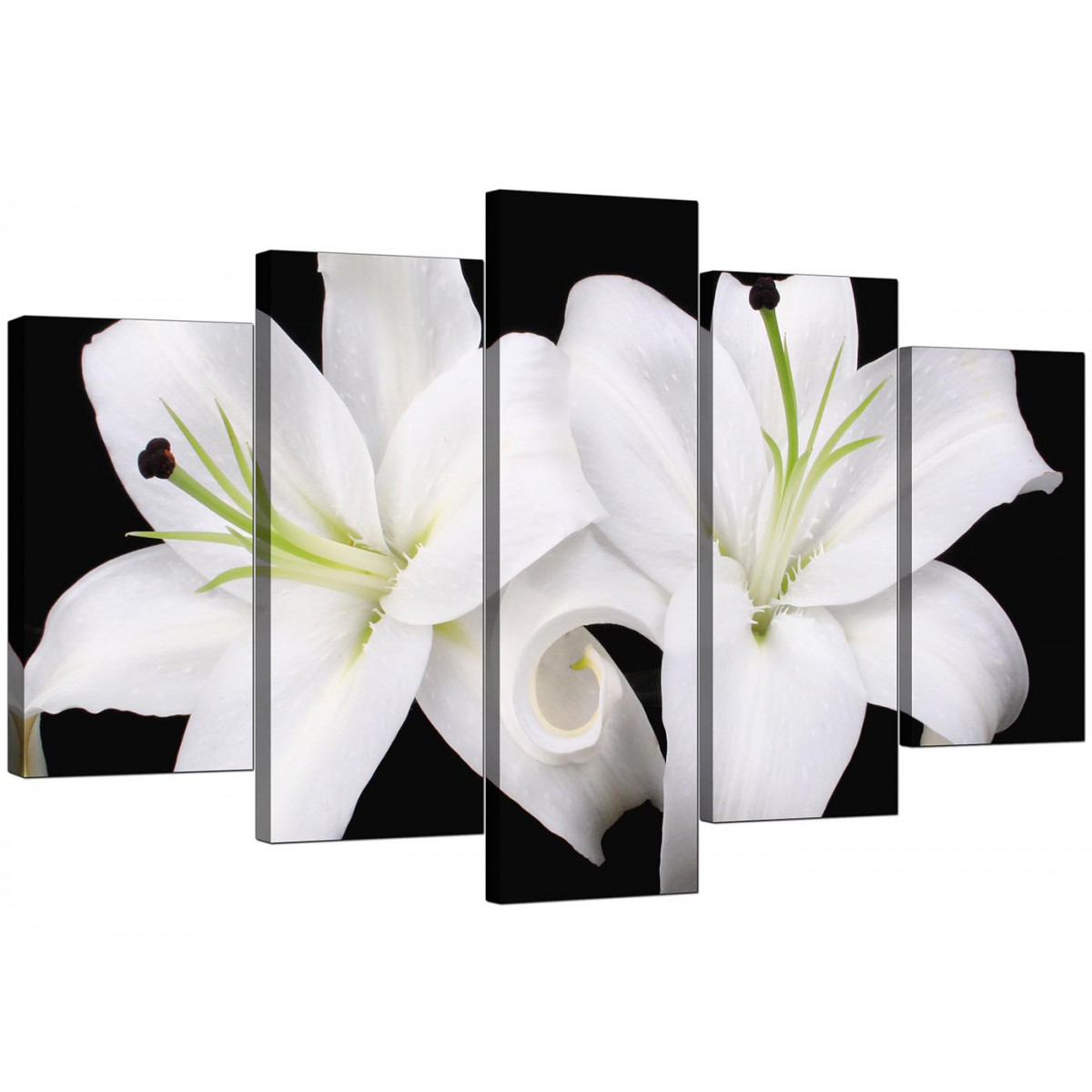 Extra Large Lilies Canvas Prints Uk 5 Piece In Black Amp White