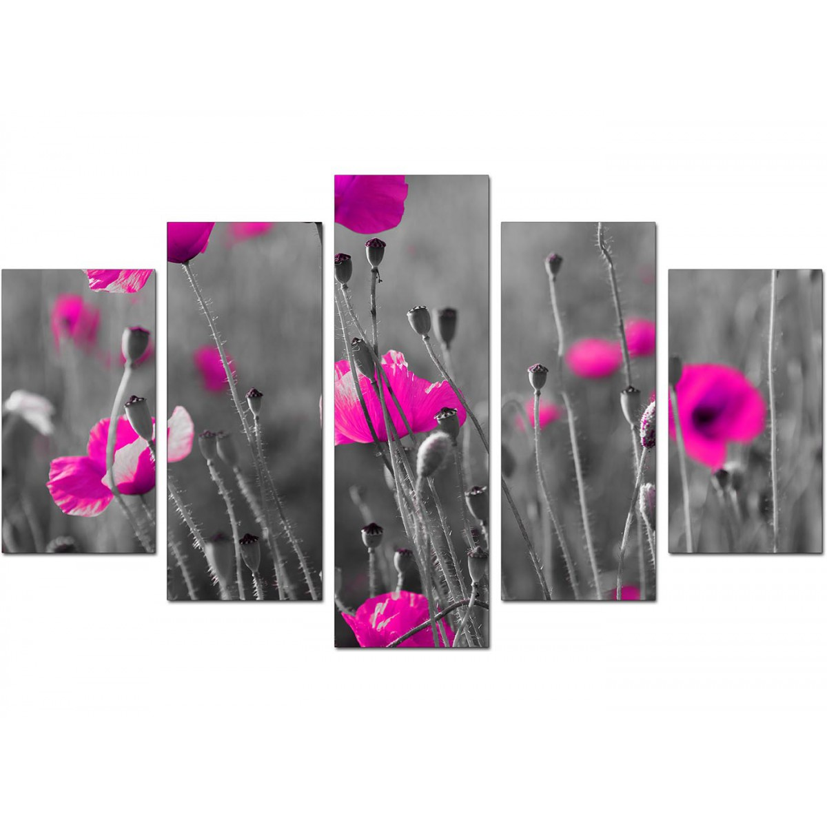 Extra Large Pink Poppies Canvas Art 5 Piece In Black Amp White