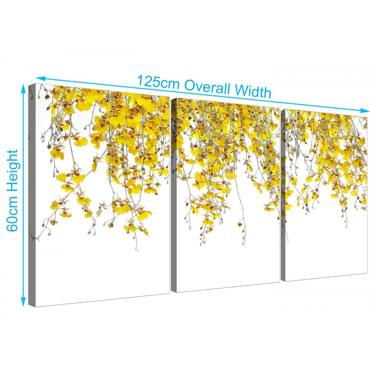 Yellow and White Orchids - Floral Canvas Multi Set of 3 Prints ...