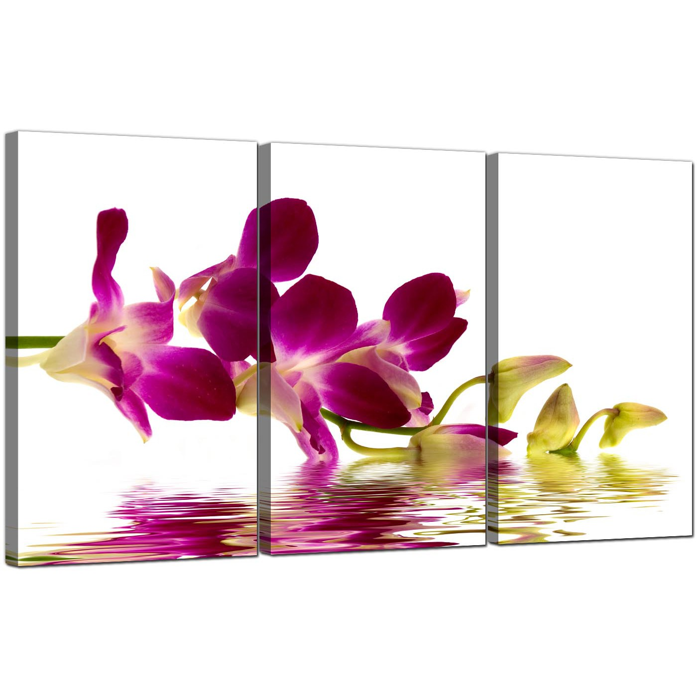 Brand new Orchids Canvas Wall Art Set of 3 for your Living Room QV42