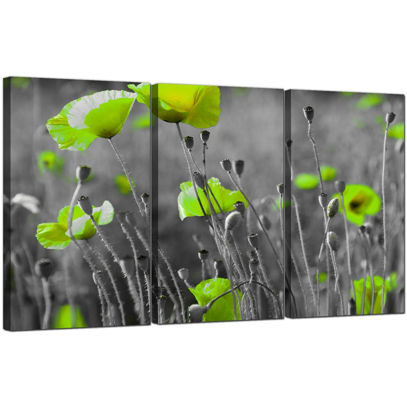 green poppy canvas wall art part for your living room