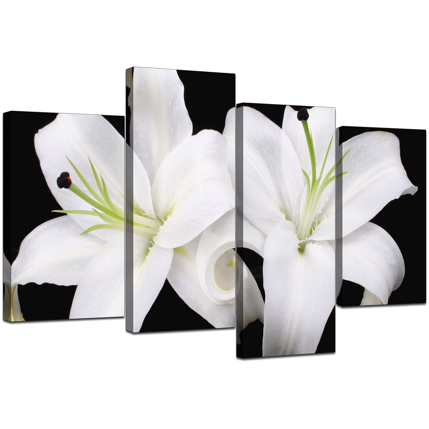 Canvas Wall Art Of Lilies In Black White For Your Living Room
