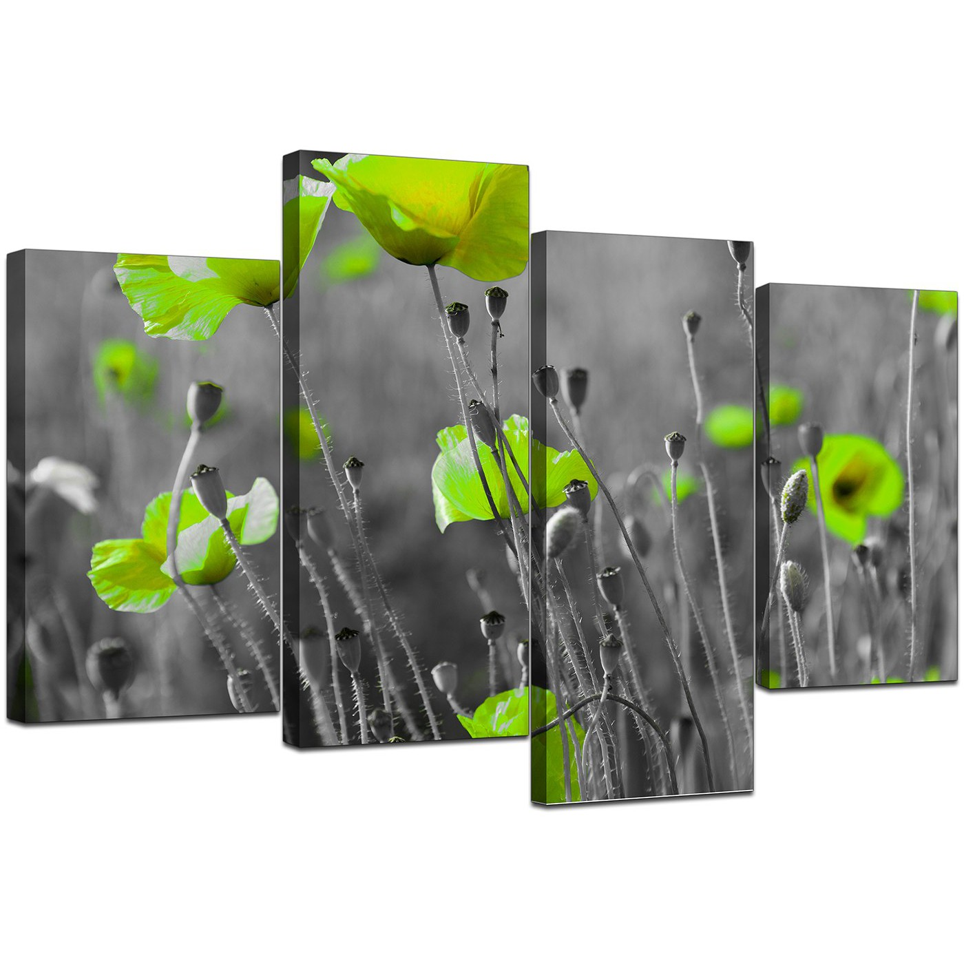 canvas pictures of green poppies in black white for your living room