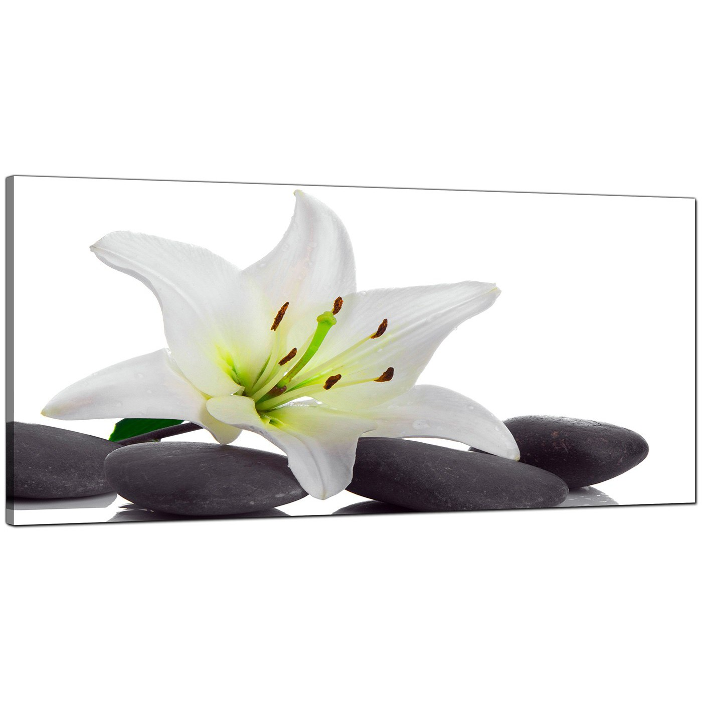 Large black and white canvas prints of a lily flower display gallery item 4 black white bedroom extra large floral canvas display gallery item 5 izmirmasajfo