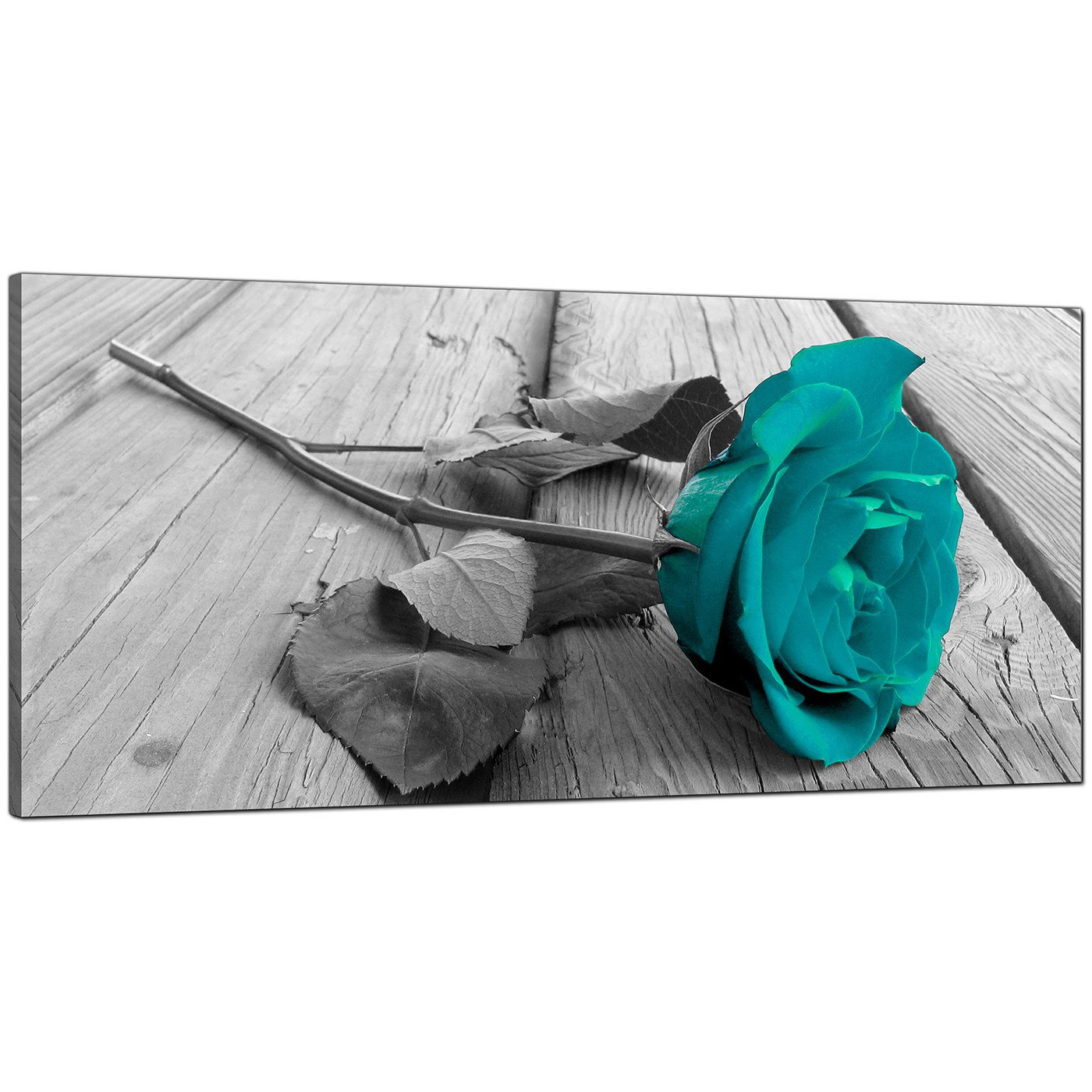 Display Gallery Item 4; Black-White Living Room Large Floral Canvas Display Gallery Item 5  sc 1 st  Wallfillers & Modern Black and White Canvas Wall Art of a Teal Rose Flower
