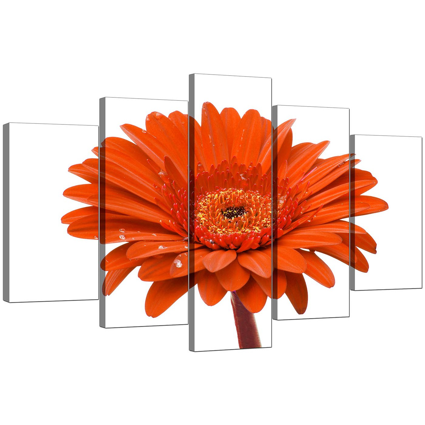 Extra Large Flower Canvas Prints 5 Part In Orange