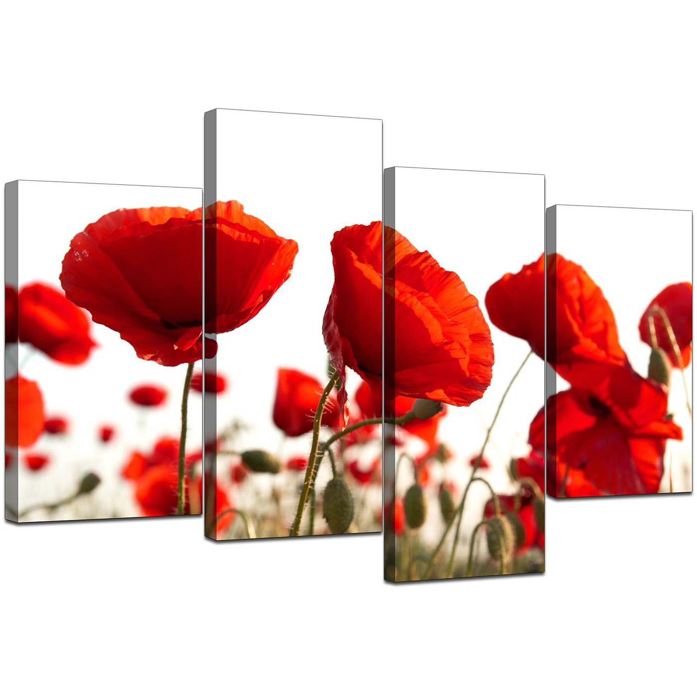 Canvas Prints Uk Of Poppy In Red For Your Living Room