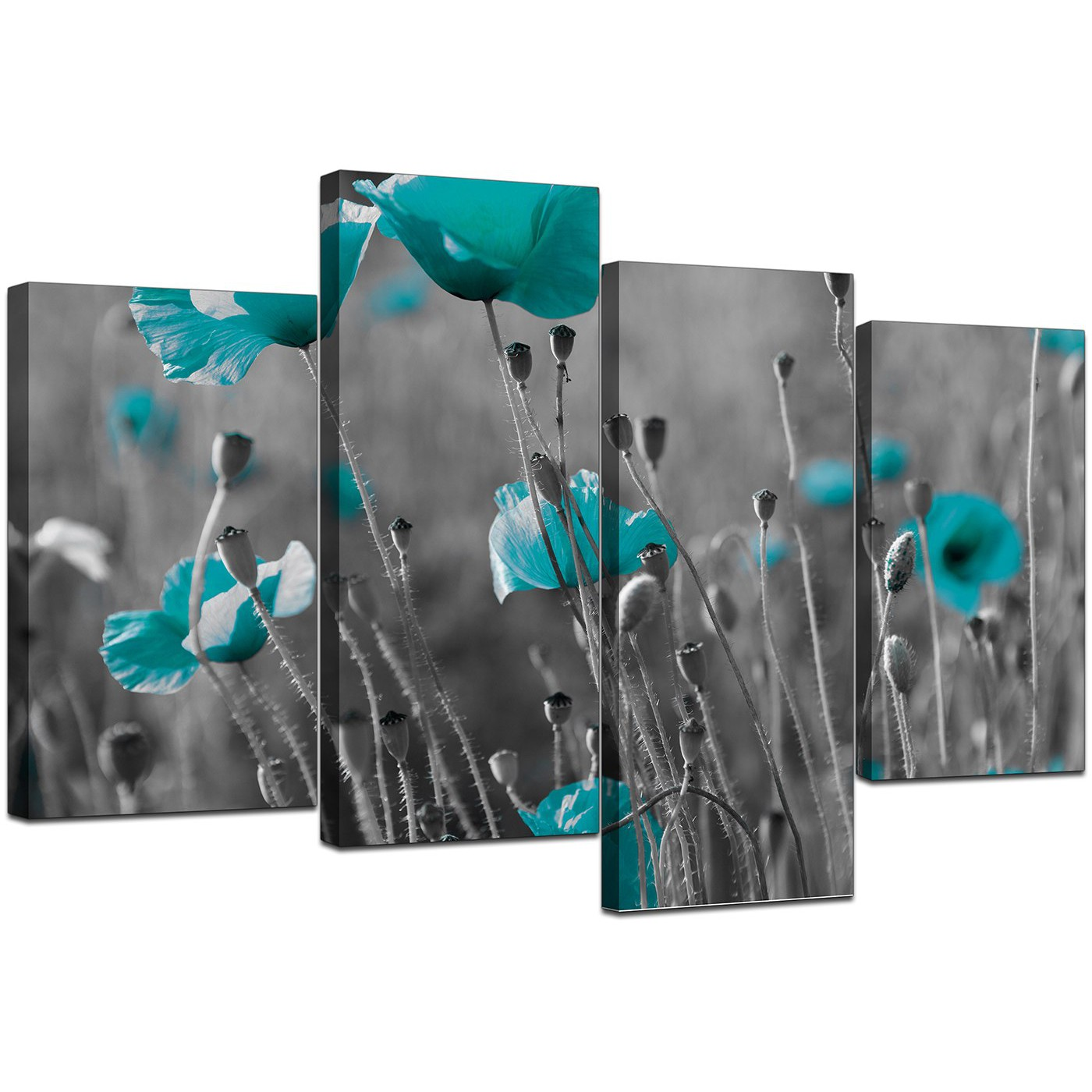 Canvas Art of Teal Poppies in Black & White for your fice
