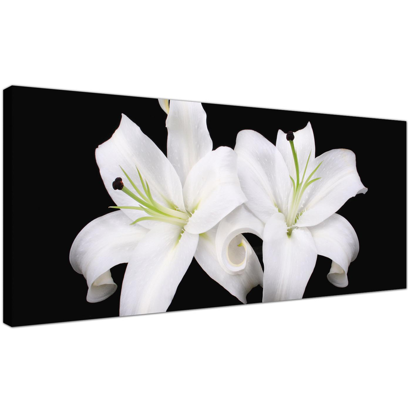 Large black and white canvas prints of lily flowers display gallery item 1 cheap canvas prints monochrome wide 1128 display gallery item 2 trendy floral canvas izmirmasajfo