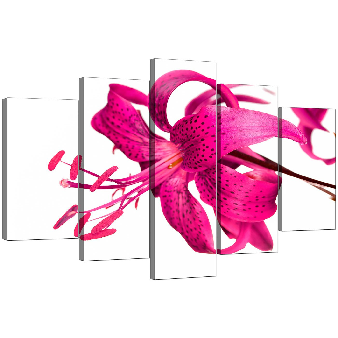 Extra Lily Canvas Wall Art Set of 5 in Pink