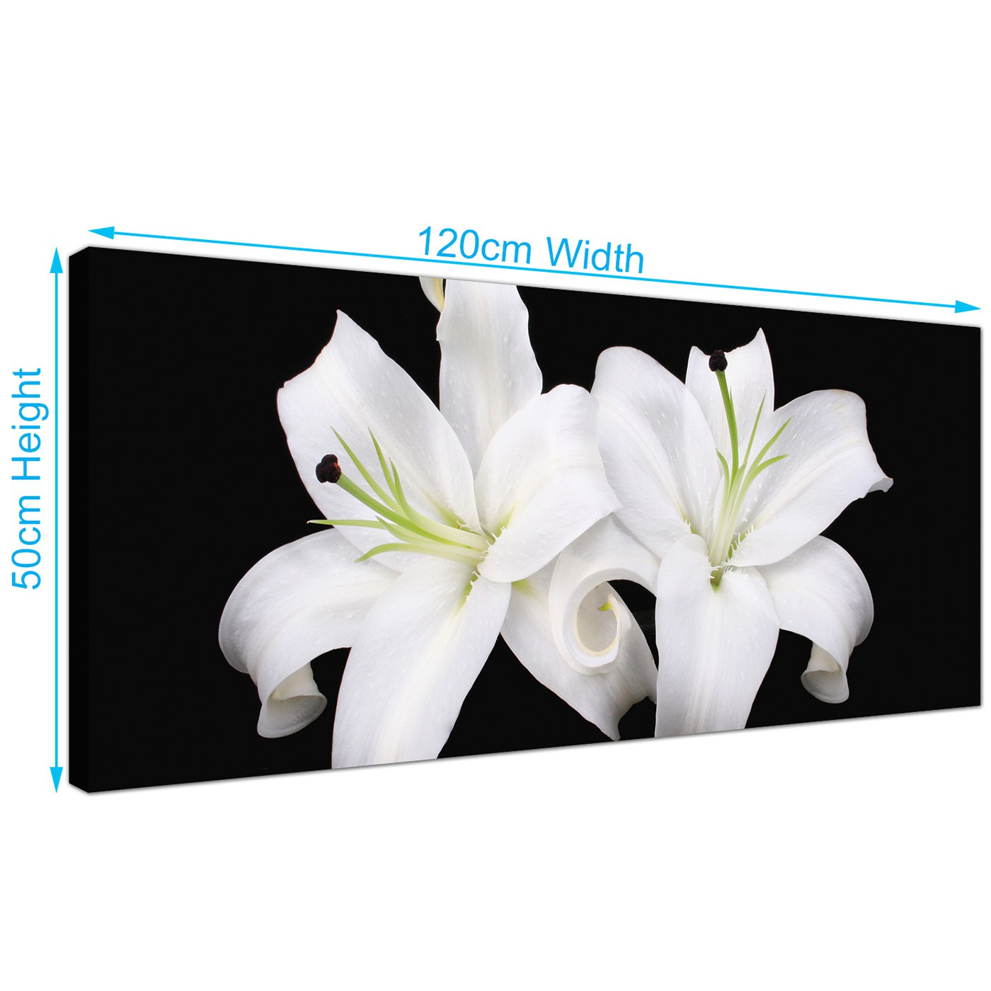 Large black and white canvas prints of lily flowers display gallery item 4 modern lily flowers canvas art 120cm x 50cm 1128 display gallery item 5 black white living room extra large mightylinksfo
