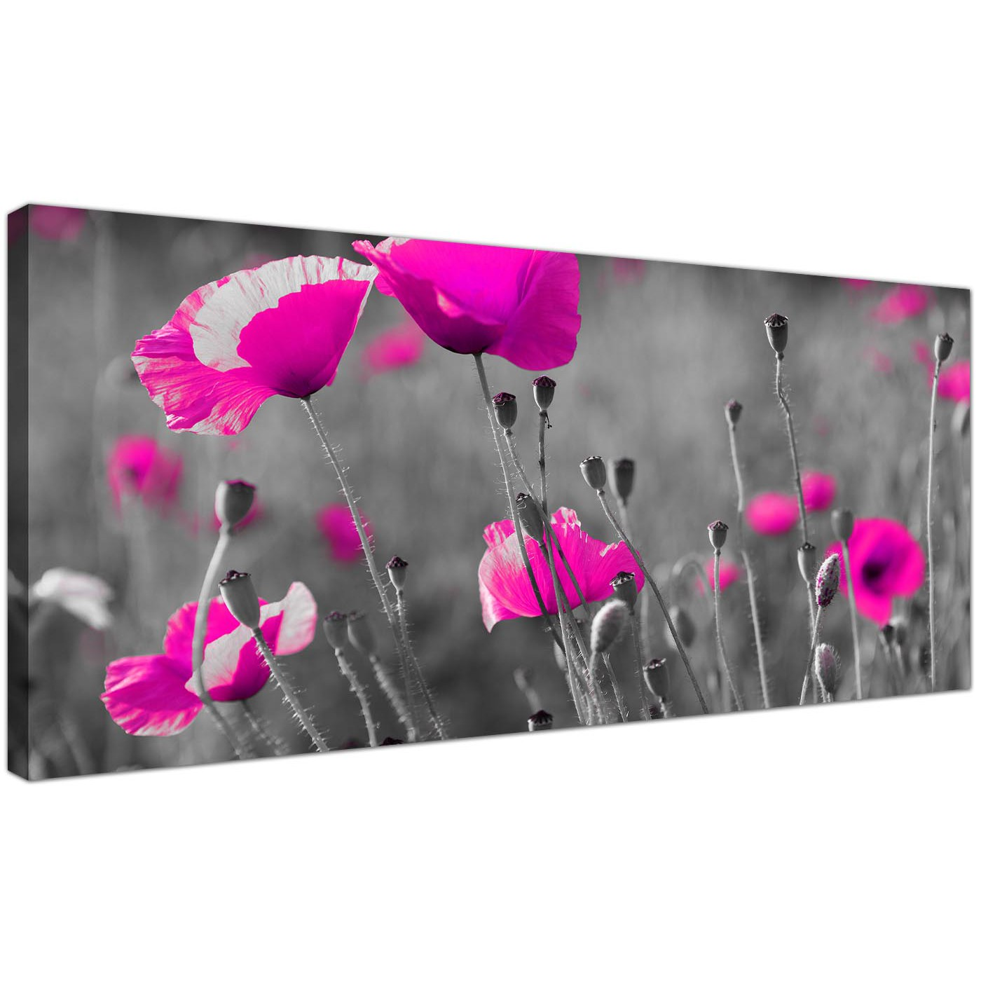 Cheap Black And White Canvas Art Of Pink Poppies