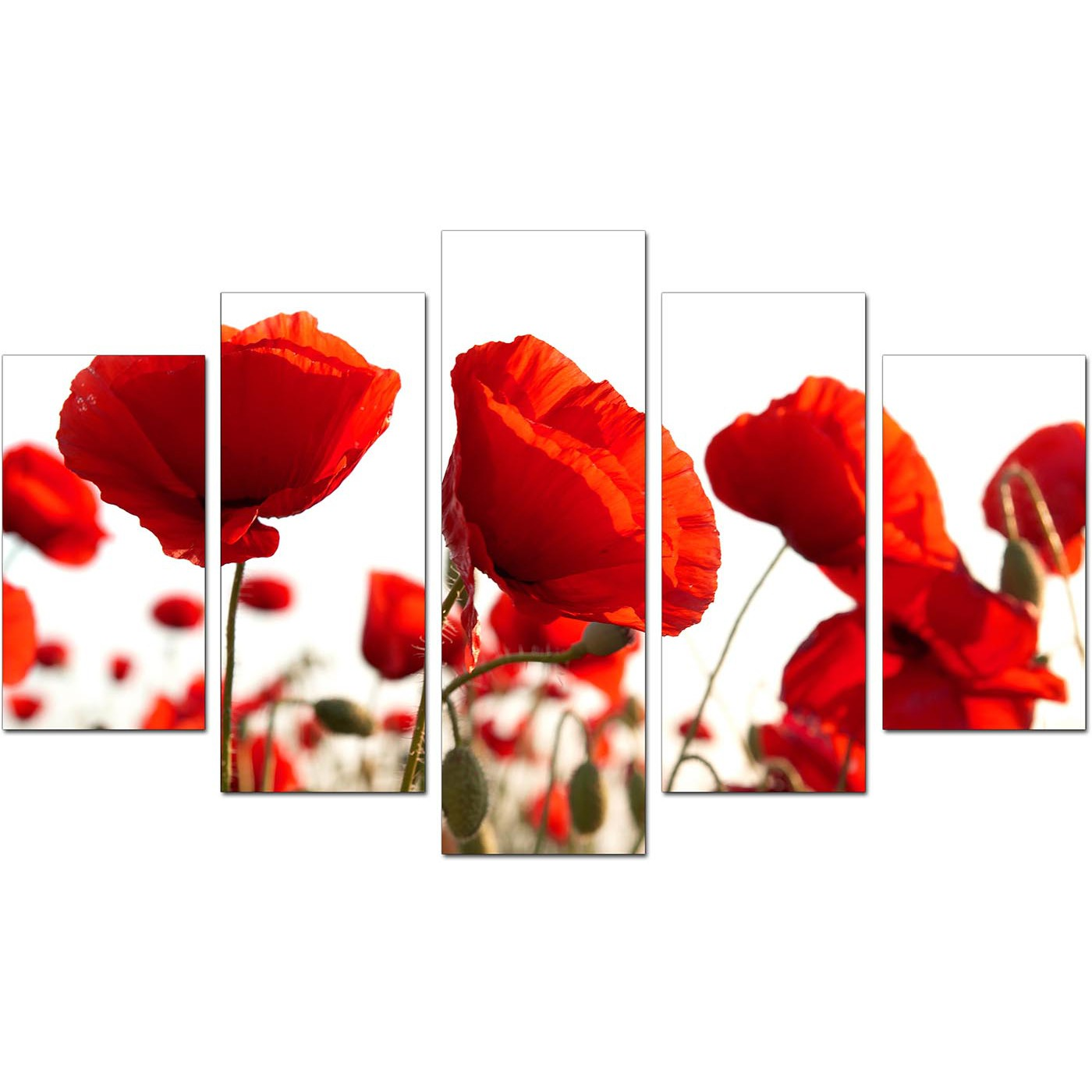 Extra large poppies canvas prints uk 5 part in red red living room five part set of poppies display gallery item 1 mightylinksfo