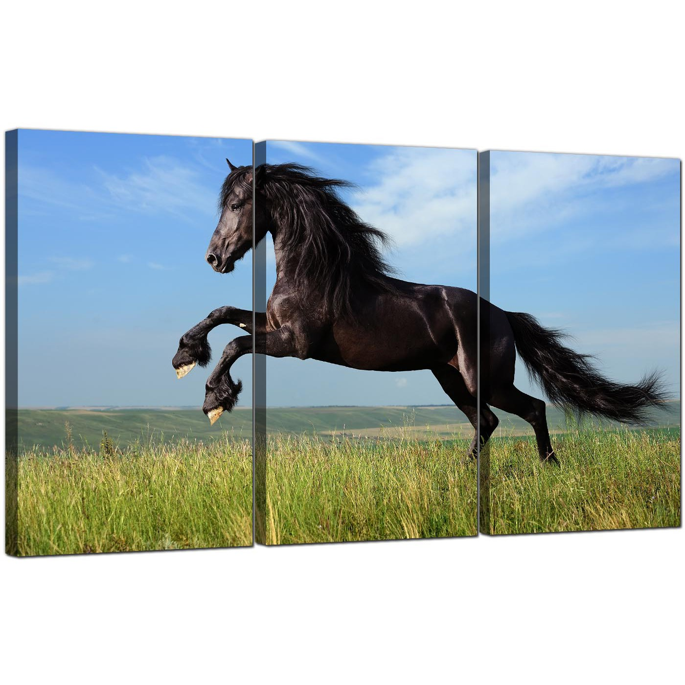 Favorite Cheap Horse Canvas Wall Art Set of 3 for your Girls Bedroom BN34