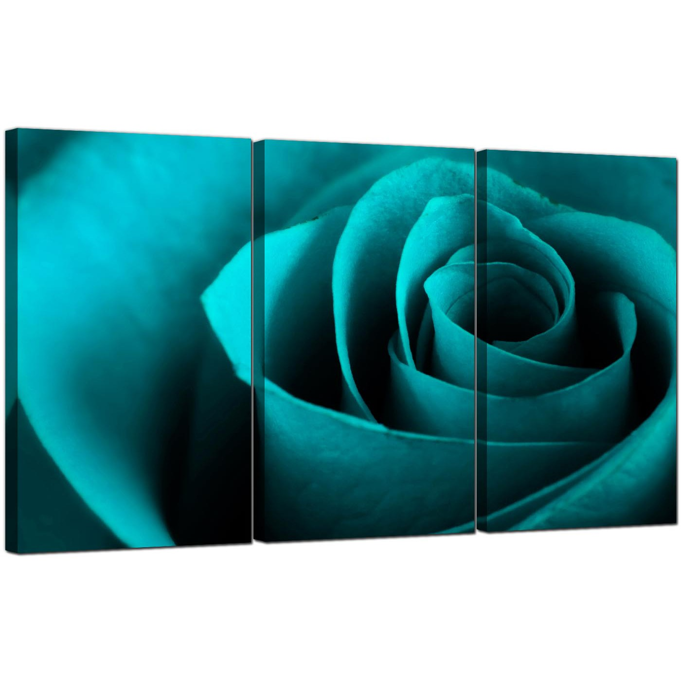 Rose Canvas Art Set Of 3 For Your Living Room