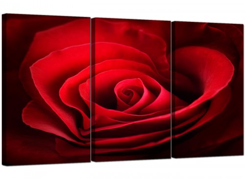 Red Rose Heart Petals Flower Floral Canvas