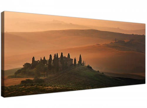 Tuscan Vineyard Canvas Art