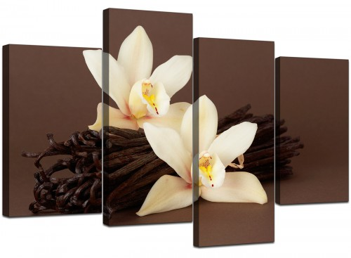 4 Piece Set of Extra-Large Brown Canvas Pictures