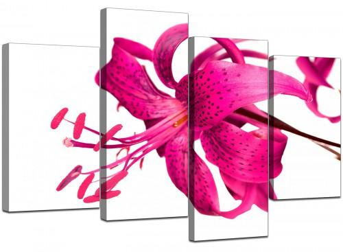 4 Part Set of Cheap Pink Canvas Prints