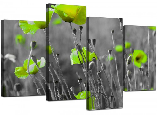 Lime Green Poppies Flower Grey Black Floral Canvas