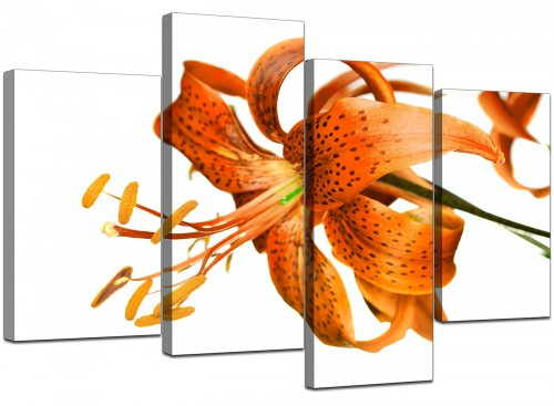 Set Of Four Cheap Orange Canvas Wall Art