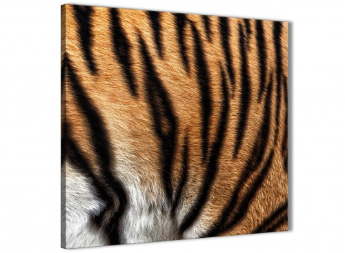 Cheap Canvas Prints Tiger Animal Print - 1s472s - 49cm Square Wall Art
