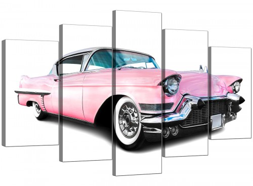 5 Panel Set of Cheap Pink Canvas Art