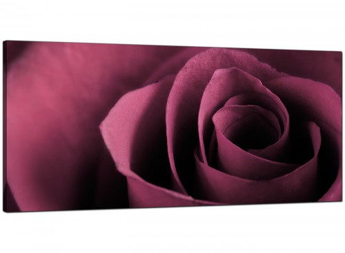 Plum Bedroom Panoramic Canvas of Flower