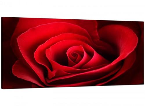 Red Rose Heart Petals Flower Floral Canvas