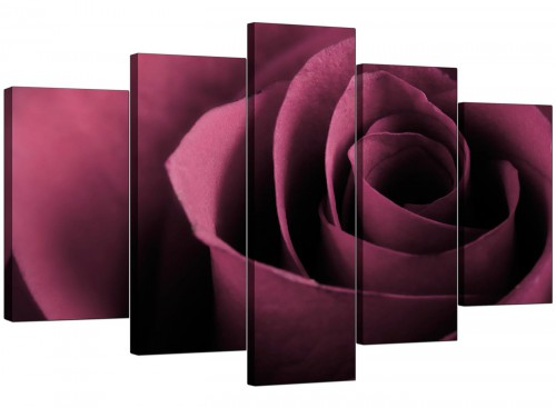 Set Of Five Modern Plum Canvas Pictures