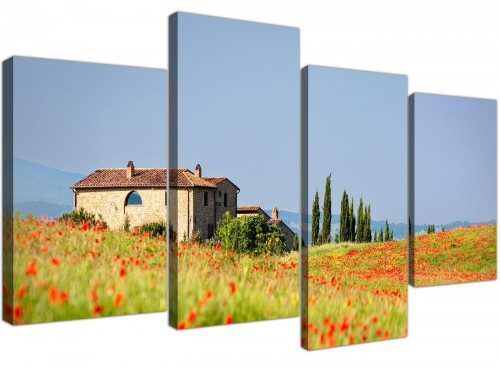 Green and Blue Tuscan Meadow with Red Poppies Canvas Print
