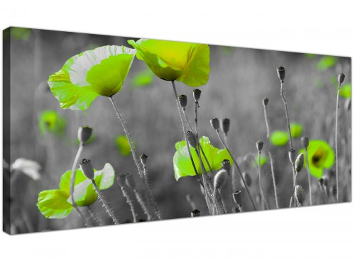 Large Canvas Pictures Monochrome Grey Wide 1138
