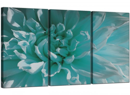 Teal Blue Chrysanthemum Flower Floral Modern Canvas Art